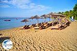 GriechenlandWeb.de Troulos beach | Skiathos Sporaden | GriechenlandWeb.de foto 14 - Foto GriechenlandWeb.de