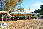GriechenlandWeb Troulos beach | Skiathos Sporaden | GriechenlandWeb.de foto 17 - Foto GriechenlandWeb.de