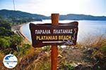GriechenlandWeb Aghia Paraskevi (Platanias beach) | Skiathos Sporaden | GriechenlandWeb.de foto 1 - Foto GriechenlandWeb.de