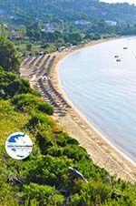 GriechenlandWeb.de Aghia Paraskevi (Platanias beach) | Skiathos Sporaden | GriechenlandWeb.de foto 3 - Foto GriechenlandWeb.de
