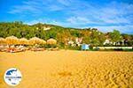 Aghia Paraskevi (Platanias beach) | Skiathos Sporaden | GriechenlandWeb.de foto 19 - Foto GriechenlandWeb.de