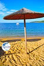 GriechenlandWeb.de Aghia Paraskevi (Platanias beach) | Skiathos Sporaden | GriechenlandWeb.de foto 24 - Foto GriechenlandWeb.de