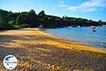 GriechenlandWeb.de Aghia Paraskevi (Platanias beach) | Skiathos Sporaden | GriechenlandWeb.de foto 25 - Foto GriechenlandWeb.de