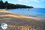 GriechenlandWeb.de Aghia Paraskevi (Platanias beach)   Skiathos Sporaden   GriechenlandWeb.de foto 26 - Foto GriechenlandWeb.de
