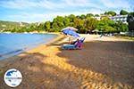 GriechenlandWeb.de Aghia Paraskevi (Platanias beach) | Skiathos Sporaden | GriechenlandWeb.de foto 28 - Foto GriechenlandWeb.de