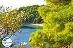 GriechenlandWeb.de Kanapitsa | Skiathos Sporaden | GriechenlandWeb.de foto 2 - Foto GriechenlandWeb.de