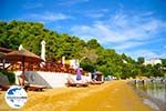 GriechenlandWeb.de Kanapitsa | Skiathos Sporaden | GriechenlandWeb.de foto 22 - Foto GriechenlandWeb.de