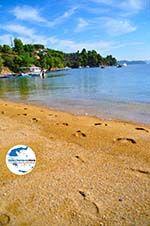 GriechenlandWeb.de Tzaneria | Skiathos Sporaden | GriechenlandWeb.de foto 5 - Foto GriechenlandWeb.de