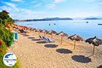 GriechenlandWeb.de Vassilias | Skiathos Sporaden | GriechenlandWeb.de foto 5 - Foto GriechenlandWeb.de