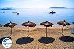 GriechenlandWeb.de Vassilias | Skiathos Sporaden | GriechenlandWeb.de foto 6 - Foto GriechenlandWeb.de