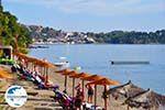 GriechenlandWeb.de Vassilias | Skiathos Sporaden | GriechenlandWeb.de foto 7 - Foto GriechenlandWeb.de