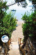 GriechenlandWeb.de Vassilias | Skiathos Sporaden | GriechenlandWeb.de foto 8 - Foto GriechenlandWeb.de
