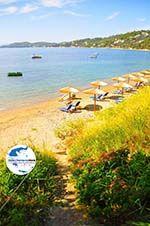 GriechenlandWeb.de Megali Ammos (Ftelia) | Skiathos Sporaden | GriechenlandWeb.de foto 4 - Foto GriechenlandWeb.de