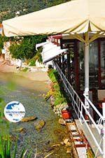 GriechenlandWeb.de Megali Ammos (Ftelia) | Skiathos Sporaden | GriechenlandWeb.de foto 14 - Foto GriechenlandWeb.de