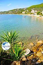 GriechenlandWeb.de Megali Ammos (Ftelia) | Skiathos Sporaden | GriechenlandWeb.de foto 16 - Foto GriechenlandWeb.de