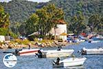 Skiathos Stadt | Skiathos Sporaden | GriechenlandWeb.de foto 5 - Foto GriechenlandWeb.de