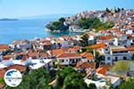 GriechenlandWeb.de Skiathos Stadt | Skiathos Sporaden | GriechenlandWeb.de foto 25 - Foto GriechenlandWeb.de