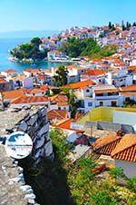 GriechenlandWeb Skiathos Stadt | Skiathos Sporaden | GriechenlandWeb.de foto 30 - Foto GriechenlandWeb.de