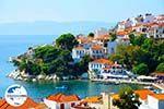 GriechenlandWeb.de Skiathos Stadt | Skiathos Sporaden | GriechenlandWeb.de foto 31 - Foto GriechenlandWeb.de