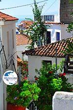 GriechenlandWeb.de Skiathos Stadt Skiathos - Foto GriechenlandWeb.de