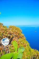 GriechenlandWeb.de Kastro | Skiathos Sporaden | GriechenlandWeb.de foto 48 - Foto GriechenlandWeb.de