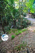 GriechenlandWeb.de Wandelpaden Klooster Kechria | Skiathos Sporaden | GriechenlandWeb.de foto 2 - Foto GriechenlandWeb.de