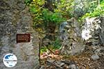 GriechenlandWeb.de Wandelpaden Klooster Kechria | Skiathos Sporaden | GriechenlandWeb.de foto 12 - Foto GriechenlandWeb.de