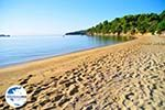 GriechenlandWeb Achladies | Skiathos Sporaden | GriechenlandWeb.de foto 17 - Foto GriechenlandWeb.de