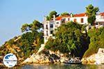 GriechenlandWeb Skiathos Stadt | Skiathos Sporaden | GriechenlandWeb.de foto 61 - Foto GriechenlandWeb.de