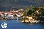 GriechenlandWeb.de Skiathos Stadt | Skiathos Sporaden | GriechenlandWeb.de foto 74 - Foto GriechenlandWeb.de
