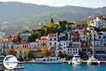 GriechenlandWeb Skiathos Stadt | Skiathos Sporaden | GriechenlandWeb.de foto 79 - Foto GriechenlandWeb.de