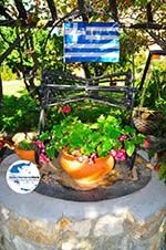 GriechenlandWeb.de Maniatis Garden Achladies | Skiathos Sporaden | GriechenlandWeb.de foto 12 - Foto GriechenlandWeb.de