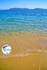 GriechenlandWeb Achladies | Skiathos Sporaden | GriechenlandWeb.de foto 23 - Foto GriechenlandWeb.de