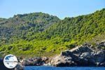 GriechenlandWeb De groene oostkust van Skopelos | Sporaden | GriechenlandWeb.de foto 7 - Foto GriechenlandWeb.de