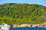 GriechenlandWeb De groene oostkust van Skopelos | Sporaden | GriechenlandWeb.de foto 8 - Foto GriechenlandWeb.de