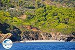 GriechenlandWeb De groene oostkust van Skopelos | Sporaden | GriechenlandWeb.de foto 9 - Foto GriechenlandWeb.de