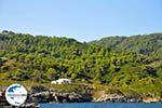GriechenlandWeb De groene oostkust van Skopelos | Sporaden | GriechenlandWeb.de foto 10 - Foto GriechenlandWeb.de