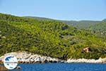 Agios Ioannis Kastri | Mamma Mia kerkje Skopelos | Sporaden Griekse Gids 17 - Foto GriechenlandWeb.de