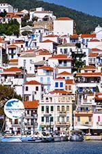GriechenlandWeb.de Skopelos Stadt | Sporaden | GriechenlandWeb.de foto 6 - Foto GriechenlandWeb.de