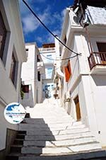 GriechenlandWeb.de Skopelos Stadt   Sporaden   GriechenlandWeb.de foto 23 - Foto GriechenlandWeb.de