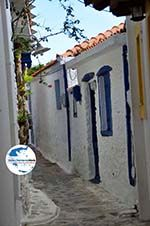 Skopelos Stadt | Sporaden | GriechenlandWeb.de foto 48 - Foto GriechenlandWeb.de