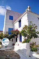 Skopelos Stadt | Sporaden | GriechenlandWeb.de foto 53 - Foto GriechenlandWeb.de