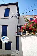 GriechenlandWeb.de Skopelos Stadt | Sporaden | GriechenlandWeb.de foto 66 - Foto GriechenlandWeb.de