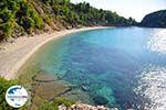 GriechenlandWeb.de Stafylos | Skopelos Sporaden | GriechenlandWeb.de foto 9 - Foto GriechenlandWeb.de