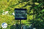 Agnontas | Skopelos Sporaden | GriechenlandWeb.de foto 1 - Foto GriechenlandWeb.de