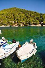 GriechenlandWeb.de Agnontas | Skopelos Sporaden | GriechenlandWeb.de foto 7 - Foto GriechenlandWeb.de
