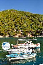 GriechenlandWeb Agnontas | Skopelos Sporaden | GriechenlandWeb.de foto 9 - Foto GriechenlandWeb.de