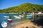 GriechenlandWeb.de Agnontas | Skopelos Sporaden | GriechenlandWeb.de foto 11 - Foto GriechenlandWeb.de