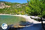GriechenlandWeb.de Limnonari Agnontas | Skopelos Sporaden | GriechenlandWeb.de foto 1 - Foto GriechenlandWeb.de