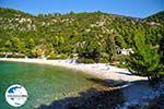 GriechenlandWeb.de Limnonari Agnontas | Skopelos Sporaden | GriechenlandWeb.de foto 6 - Foto GriechenlandWeb.de